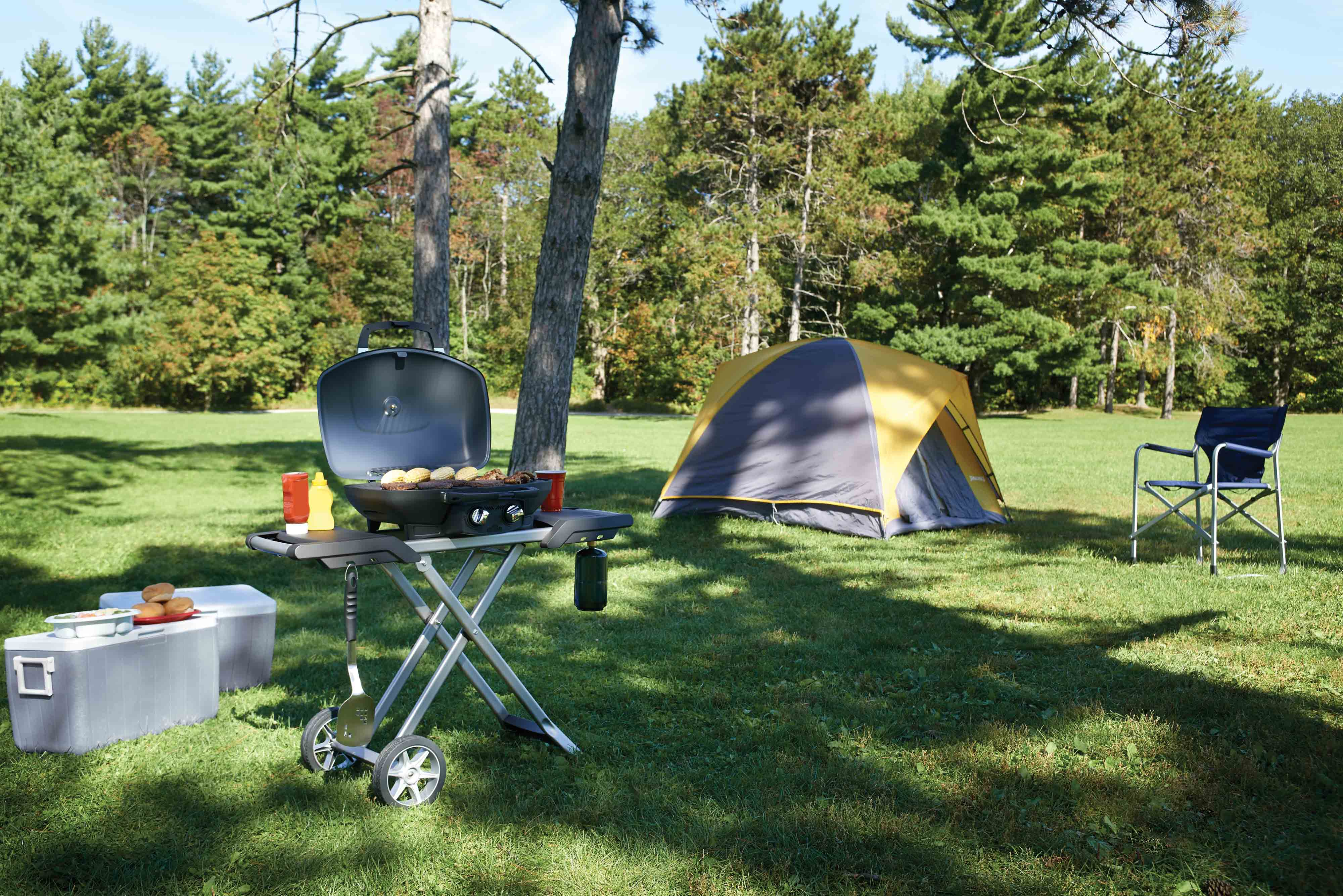 Camping & Portable BBQ's